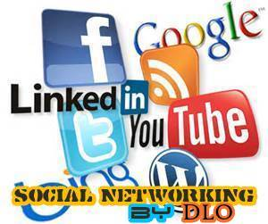 Social Networking by DLO